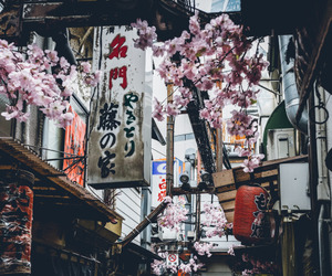 asia, japan, and tokyo image