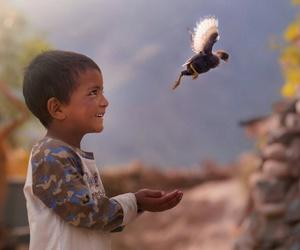 bird, child, and smile image