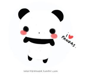 panda and kawaii image