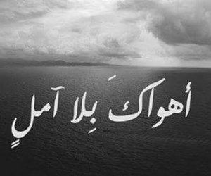 cover, فيروز, and أهواك image