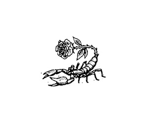 animal, dessin, and rose image