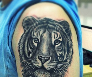 tattoo, tiger, and love image