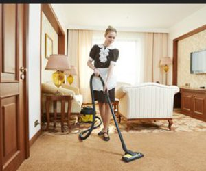 elite, rug cleaning, and professional image