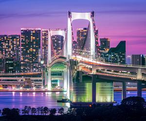 bridge, big city, and purple image