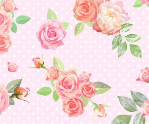 rose, roses, and wallpaper image