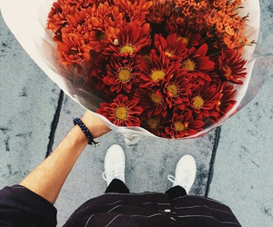 flowers, red, and bouquet image
