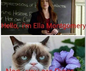 charmed, pll, and funny image