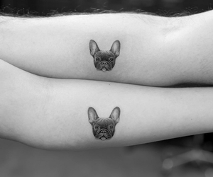 dogs and tatto image