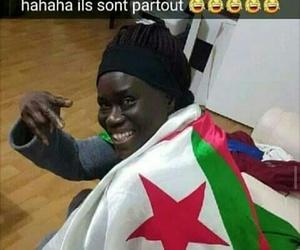 Algeria, dz, and funny image