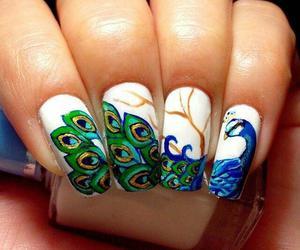 nails, peacock, and art image