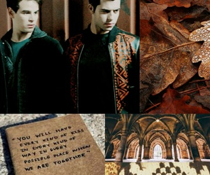 brown, otp, and vampires image