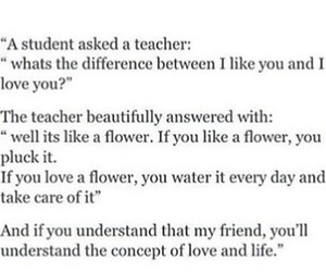 flower, life, and love image