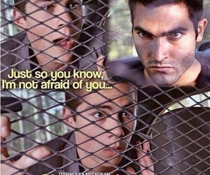 fear and teen wolf image