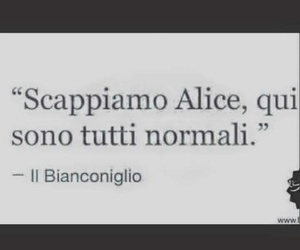 alice, bianconiglio, and normal image