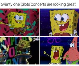 funny, meme, and sponge bob image