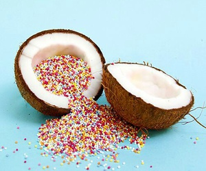 coconut, blue, and food image