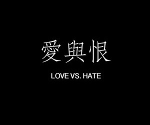 quote, hate, and love image