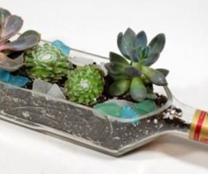 bottle, planters, and pots image