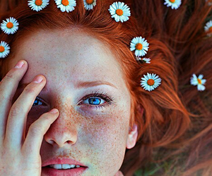cover, flowers, and we heart it image