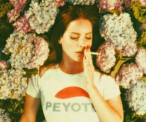 lana del rey, beautiful, and indie image
