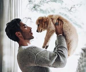dog, boy, and model image