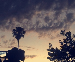 clouds, nature, and palms image