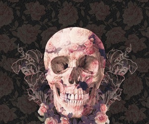 skull, wallpaper, and rose image