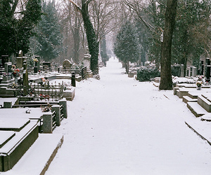 cemetary and snow image
