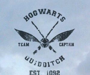 harry potter, quiditch, and hogwarts image