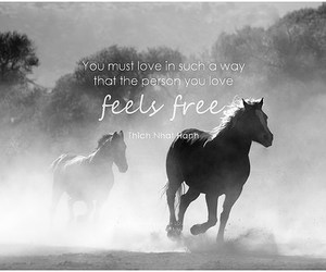 free, freedom, and inspiration image