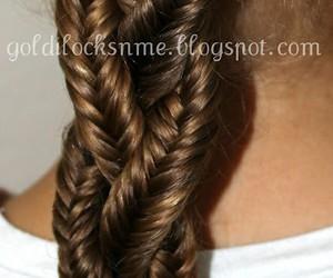 braid and trenza image