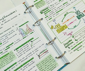 notes, school, and study image