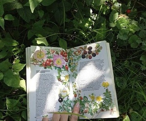 book, flowers, and green image
