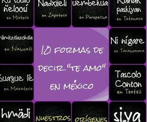 love, lenguas, and mexico image