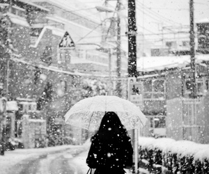 black and white, snow, and cold image