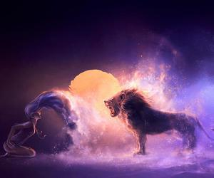 lion, Leo, and zodiac image