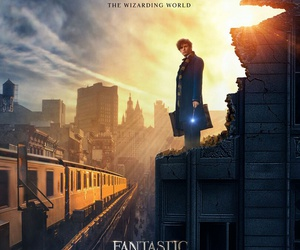 fantastic beasts, harry potter, and eddie redmayne image