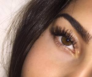 eyes, eyebrows, and lashes image