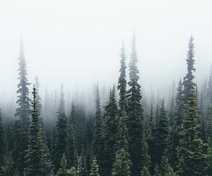 cloudy, cozy, and nature image