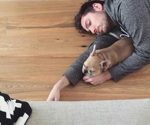 dog, you me at six, and josh franceschi image