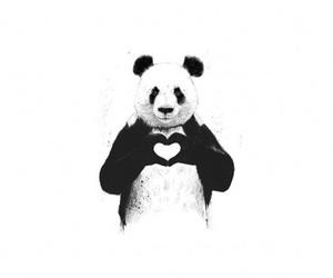 panda, heart, and animal image