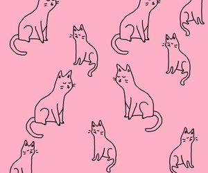 cat, pink, and wallpaper image