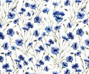 blue flowers, floral pattern, and pattern image