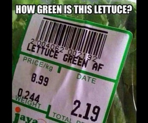 funny, lettuce, and lol image