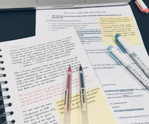 school and studyblr image