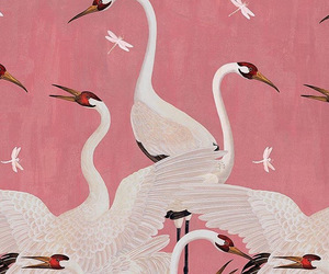 pink, art, and bird image