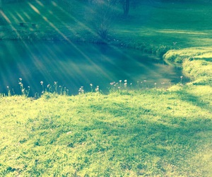 flowers, lake, and sunbeam image