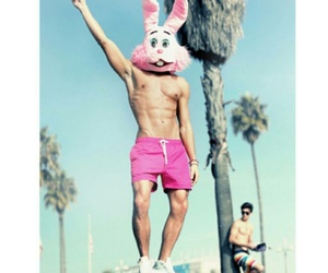 easter bunny, summer, and tumblr image