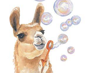art, llama, and bubbles image