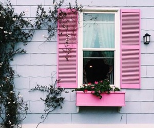 pink, window, and flowers image